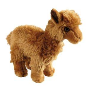 alpac teddy