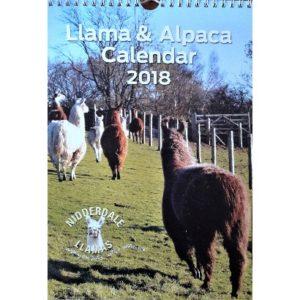 calendar front cover 2018a