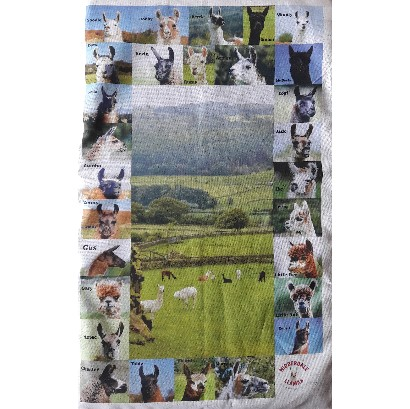 tea towel view white