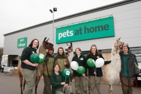 pets-at-home-team-members-with-nidderdale-llama-e1355913763269