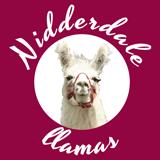 Nidderdale Llamas