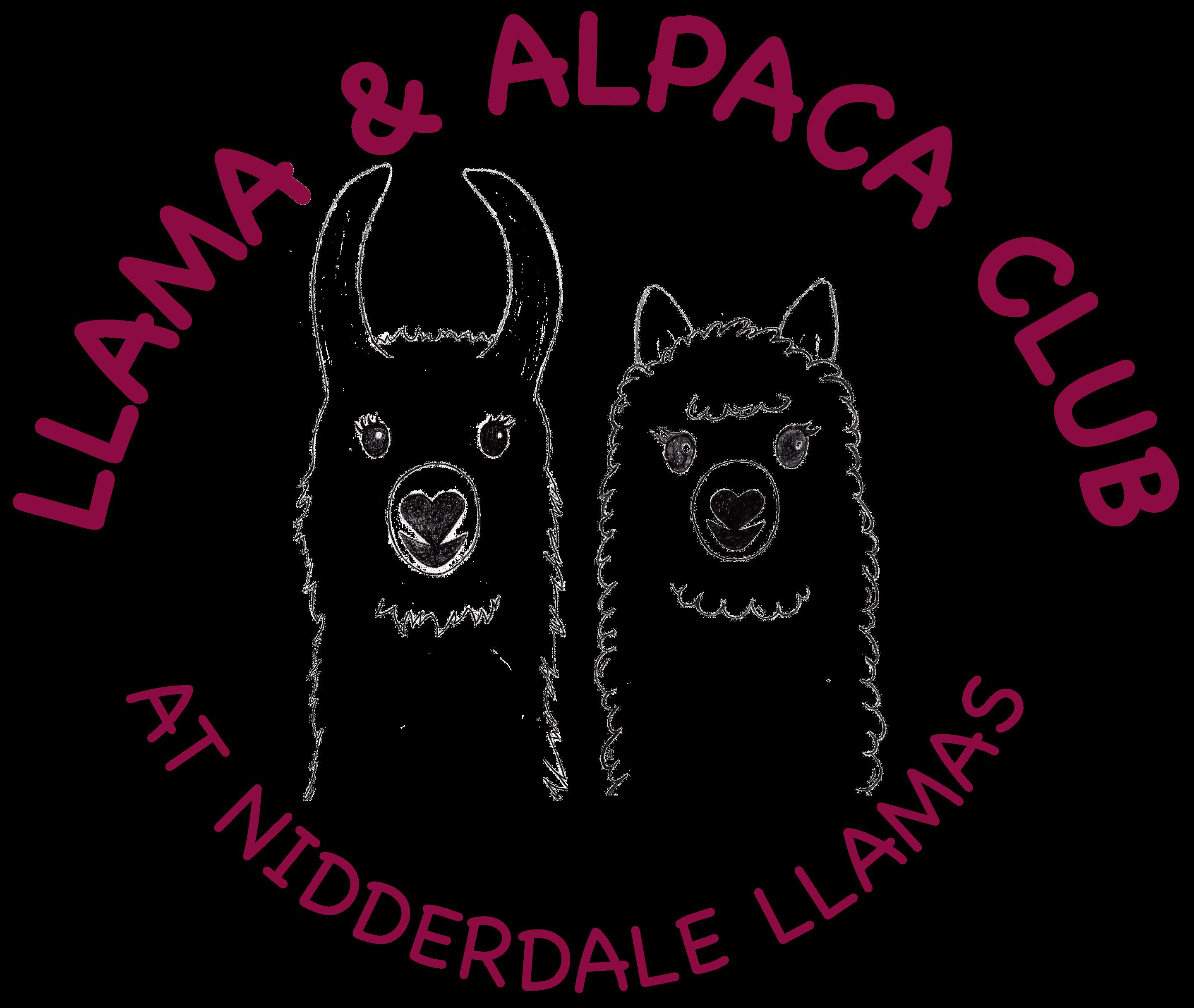Llama and Alpaca Club Logo